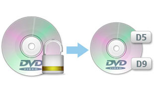 Copy DVD to DVD Disc