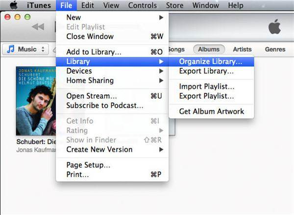 backup itunes to icloud-Organize Library