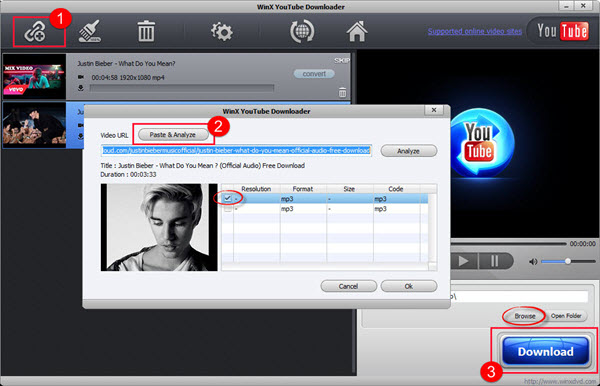 online deezer downloader - WinX YouTube Downloader