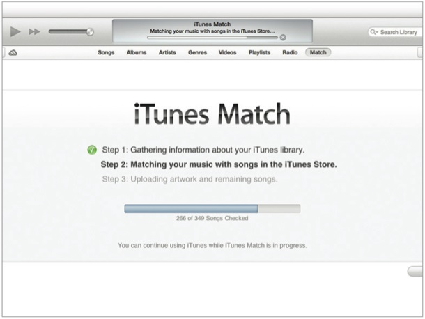 Clean up and organize iTunes music library-itunes match