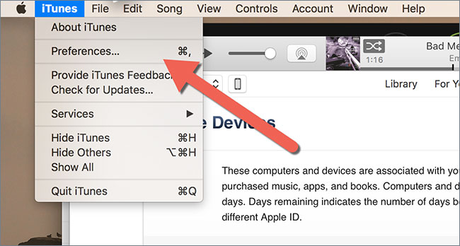Clean up and organize iTunes music library-activate itunes match