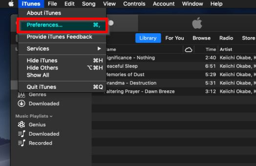 How to Send a Song from iTunes-find the preference