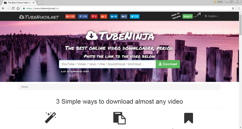 Online Site Like Savefrom.net - TubeNinja