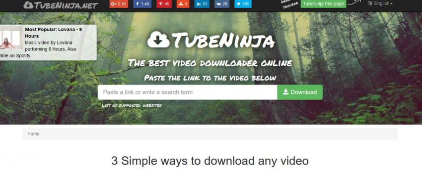 Video Downloader for Tumblr - Tube Ninja