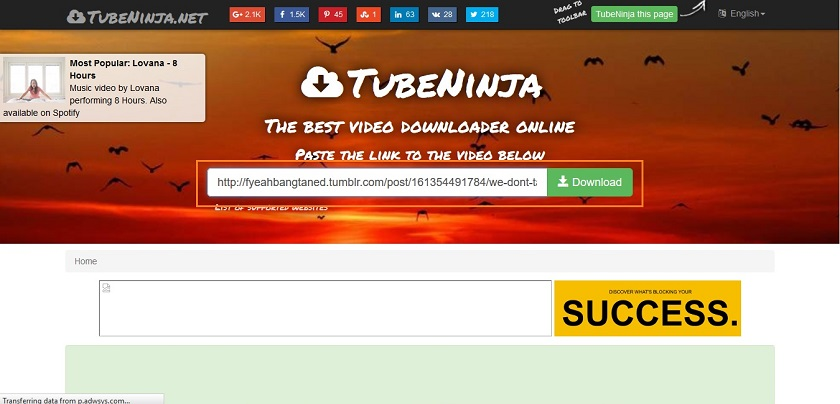Download Tumblr Videos in Safari - Paste URL and Click Download Button