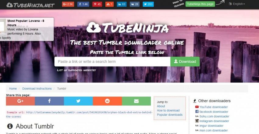Online Tumblr Video Downloader - TubeNinja